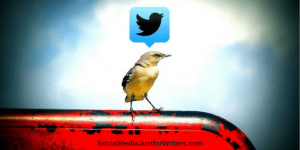 How to Manage a Twitter Account as an Indie Author